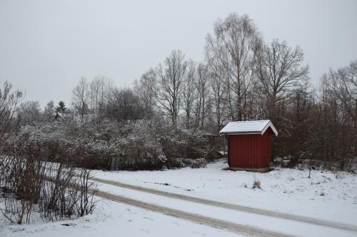 De sneeuw ligt nog prachtig op de takken...