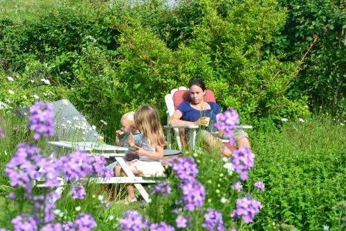 picknicken in een bloemenzee